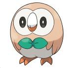 rowlet-pokemon